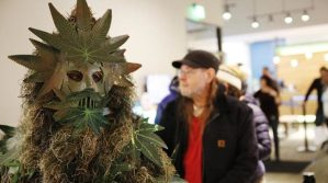 'Potsquatch' shows up for first day of recreational pot sales