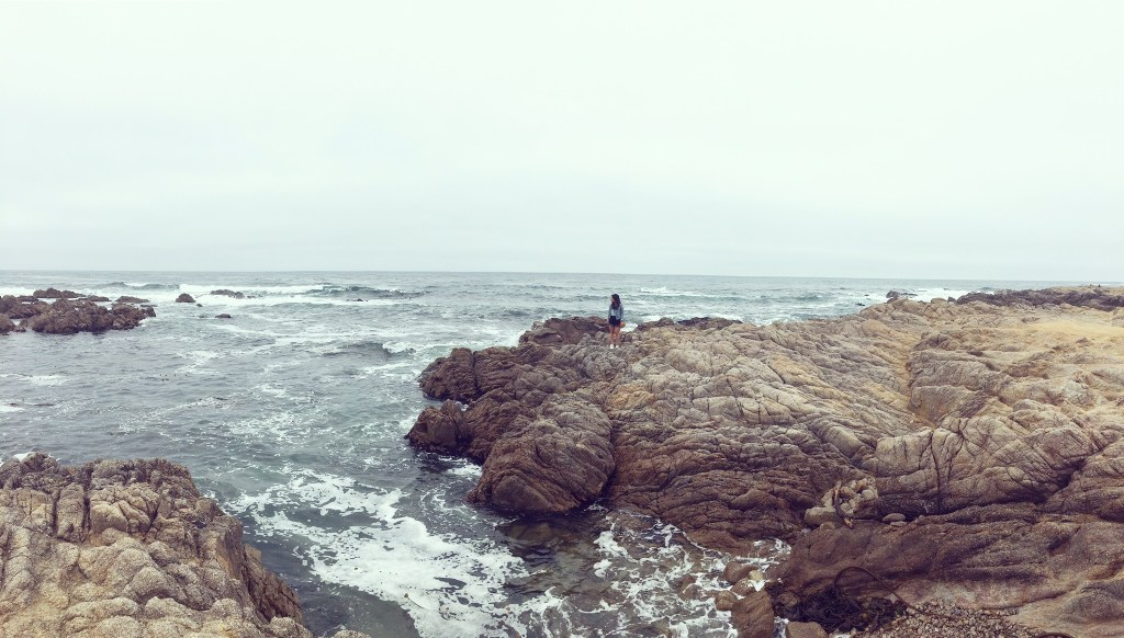 Things to do in Monterey Bay