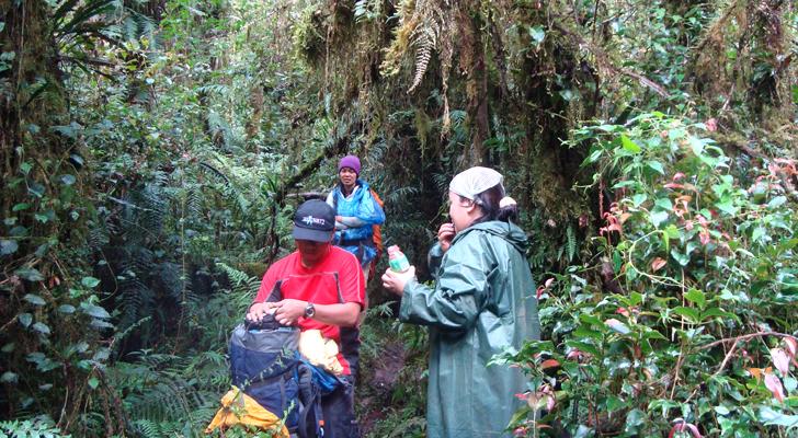 Mt Apo trek - along Sibulan trail