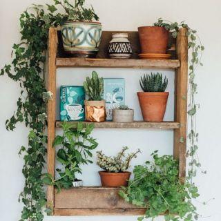 Kitchen Envy – finding your dream kitchen!