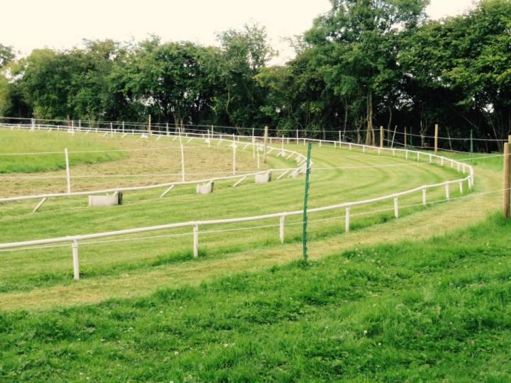 WCRA Championship Venue - Ryemeadows Pedigree Whippet Racing Club bend track