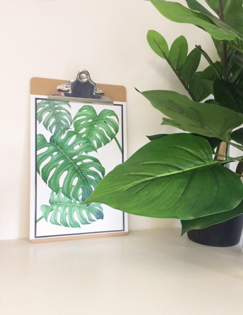 Willkommen im Dschungel und mitten im Palmentrend | Do-Mini