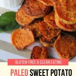 Paleo Sweet Potato Chips and Dip Pin