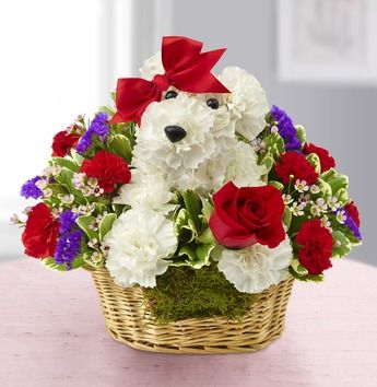 valentines-day-pup