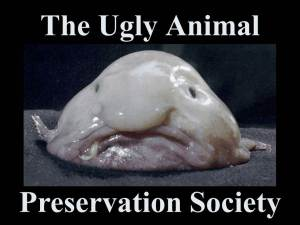 The Ugly Animal Preservation Society