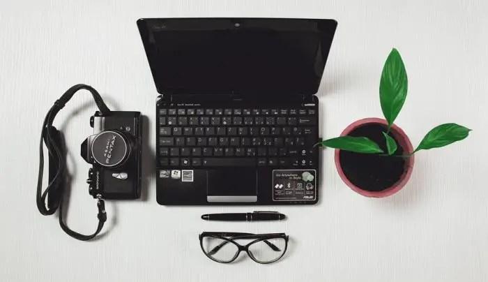 laptop, desk, plant