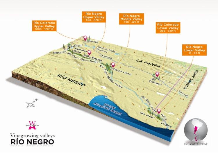 Rio Negro's wine road in Patagonia
