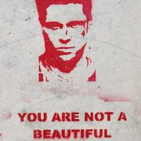 Fight Club, American Beauty: the Search for Beauty and Meaning