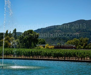 The Napa Wine Train chugs through the vineyards