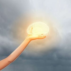 is the brain the source of consciousness?