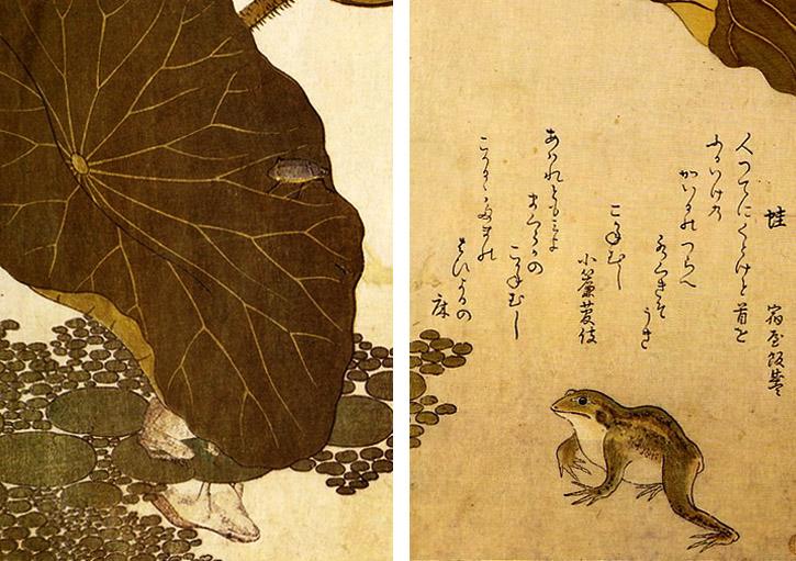 Haiku Basho rana