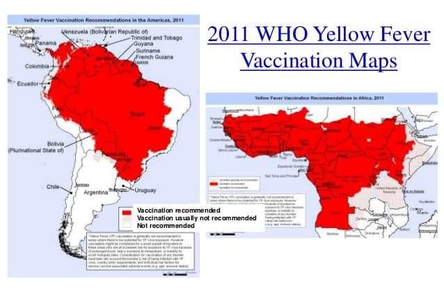 Mapa febre amarela consulta do viajante