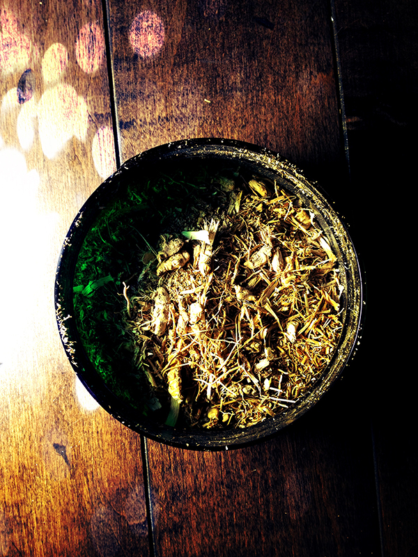 Witches herbs vetivert