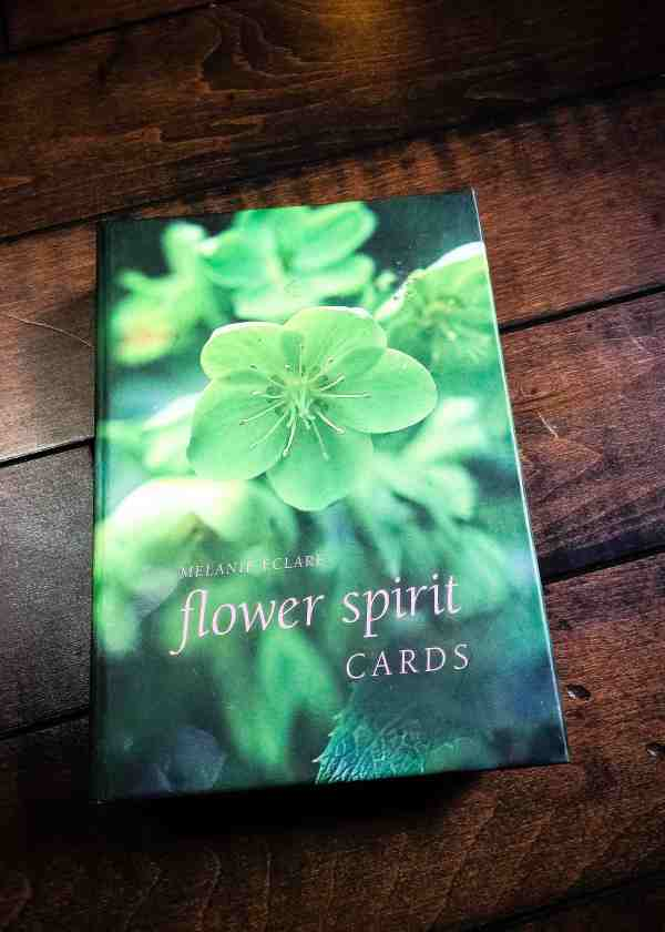 Flower Spirit Cards