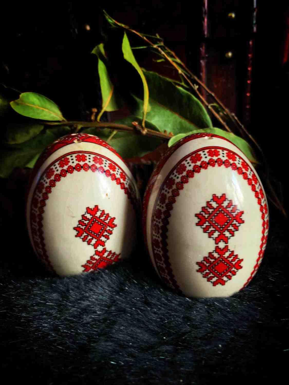Pysanka Shaker & Egg Shells
