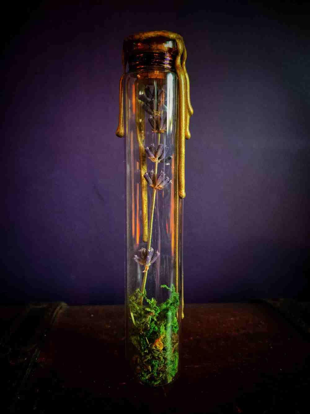 The Lavender Reliquary