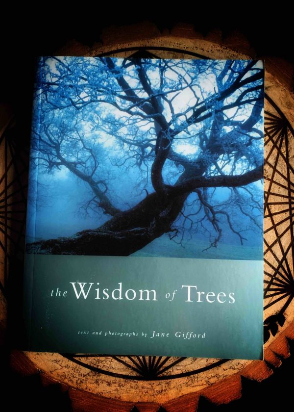 The Celtic Wisdom of Trees: Mysteries, Magic and Medicine