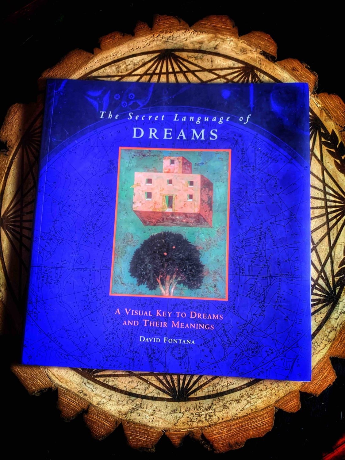 The Secret Language Of Dreams