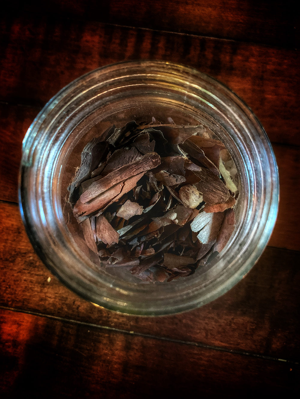 Witches Herbs Yew Bark