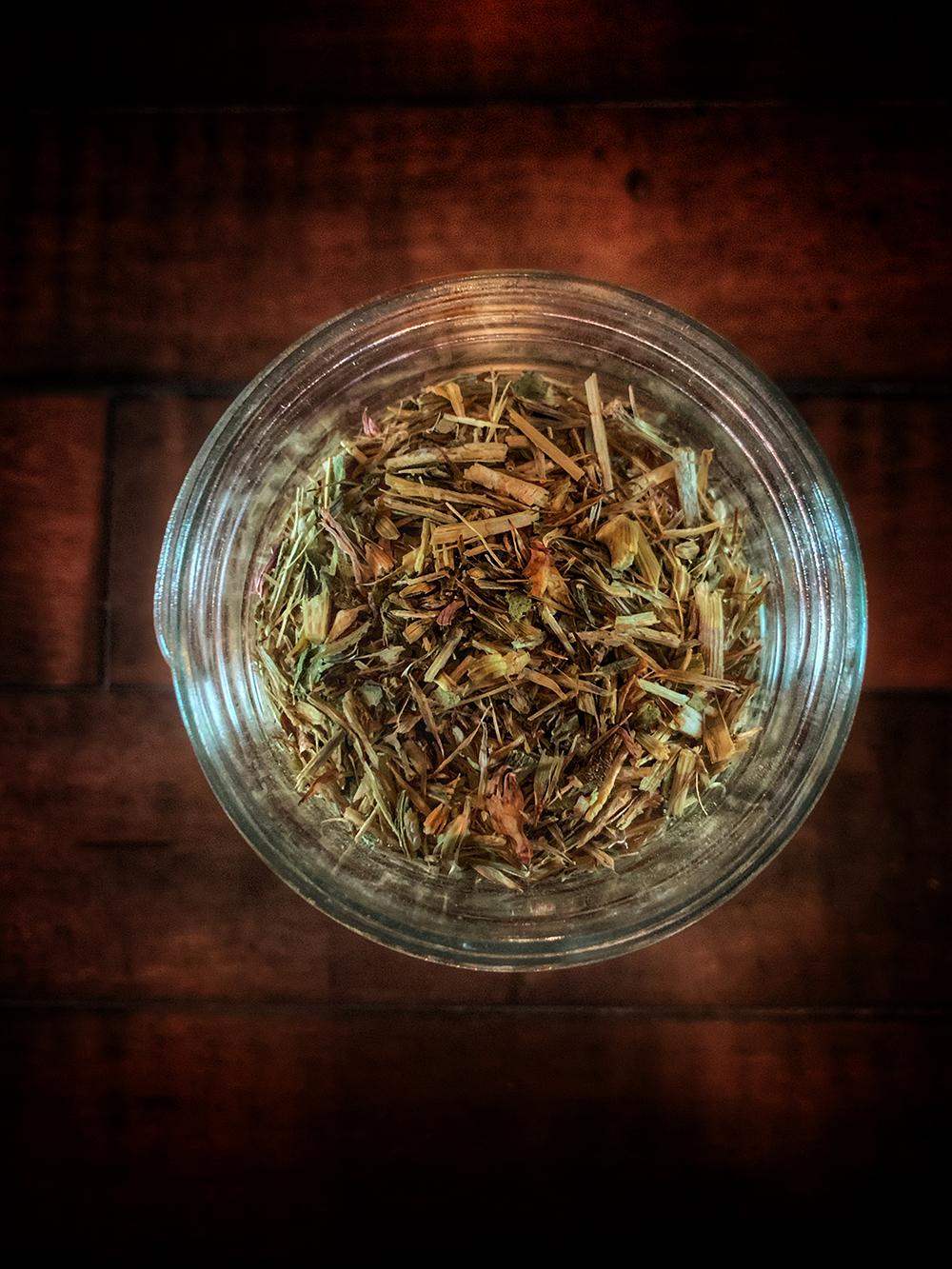 Echinacea / Sampson Snake Root