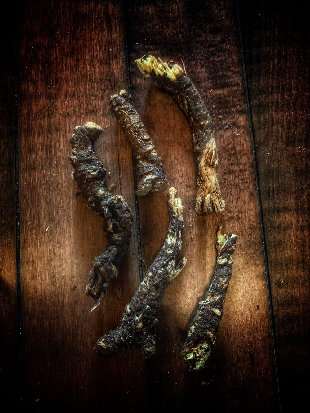 Osha / Bear Whole Root