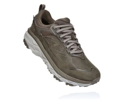 Hoka One One Womens Challenger Low Gor-Tex Major Brown Heather Front