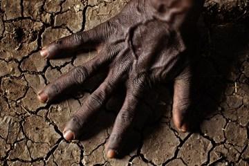 soil-thewordisbond