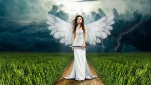 angel in crop field