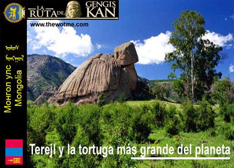 Terelj y la tortuga más grande del planeta Terelj y la tortuga más grande del planeta Terejl mongolia