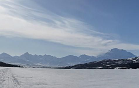 Diseases hidden in ice