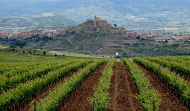 We'll explore the lovely region of La Rioja as part of the travel writing class.