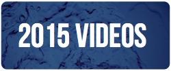 15videobutton