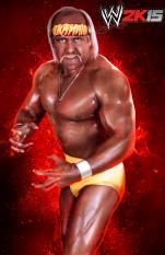wwe2k15 Hogan