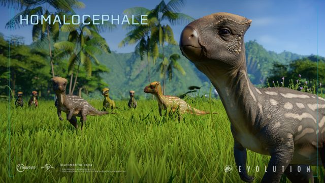 jurassic world evo Homalocephale_2