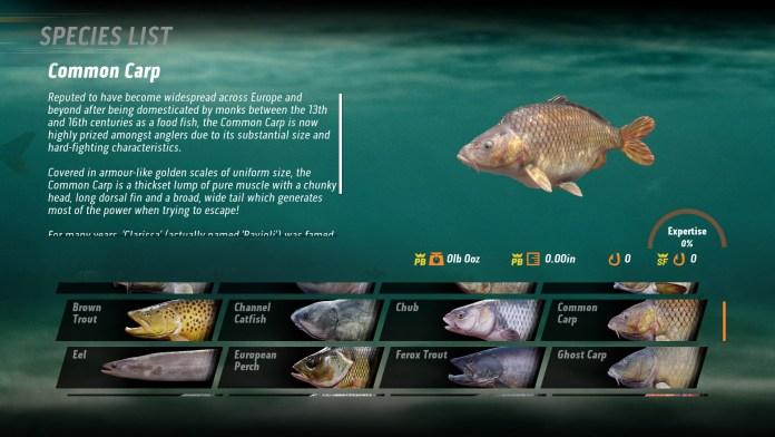 the catch carp and coarse fish 1