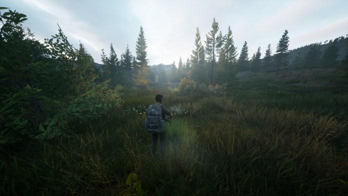 hunting simulator 2 xbox