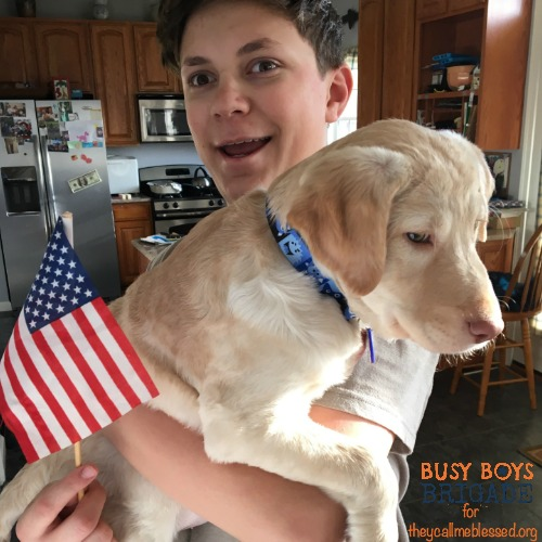 How We Homeschool 5 Boys & A Dog is part of 30 Ways We Homeschool, a blog party at They Call Me Blessed.