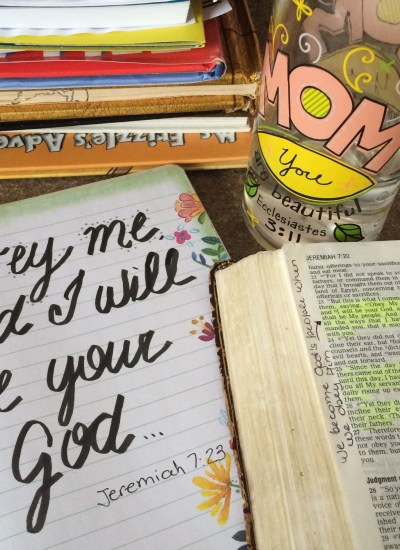Obeying God's Voice