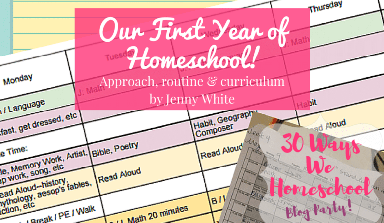 Our First Year of Homeschool: Approach, Routine & Curriculum.