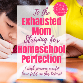 Homeschool Perfection