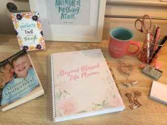 Beyond Blessed Life Planner by Ana Willis at They Call Me Blessed