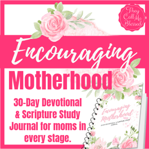 Encouraging Motherhood Devotional & Scripture Study Journal