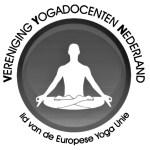 logo VYN