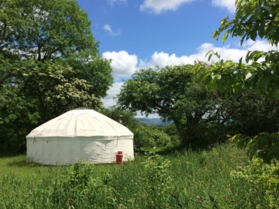 Nuthatch yurt in the sun