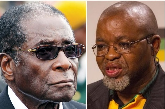 ANC elective conference a matter of 'life and death': Mantashe