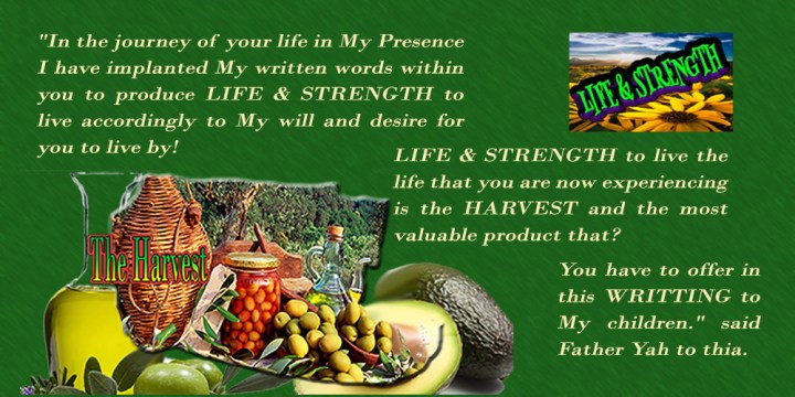 The harvest Ahmad AvocadoLife n Strength