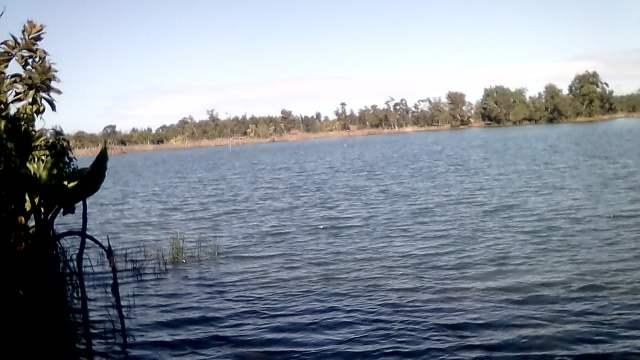 Elevage piscicole au canal des Pangalanes