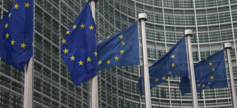 Der Ordoliberalismus: Fluch oder Segen für Europa?