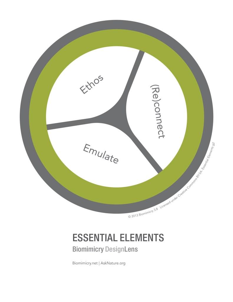 biomimicry38_designlens_essential_elements_web