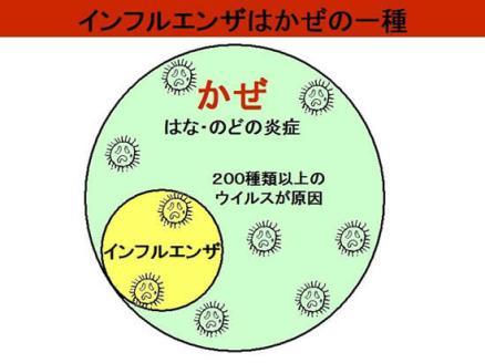 「風邪 インフルエンザ」の画像検索結果